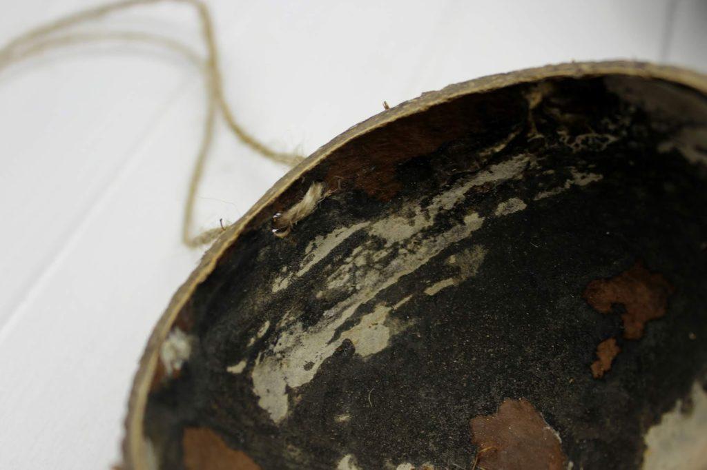 DIY: Vogelfutter ganz einfach in einer Kokosnussschale selber machen - mit Kokosfett