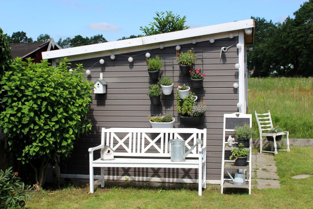 Garten, Pflanzen, Blumentöpfe, Urban Gardening