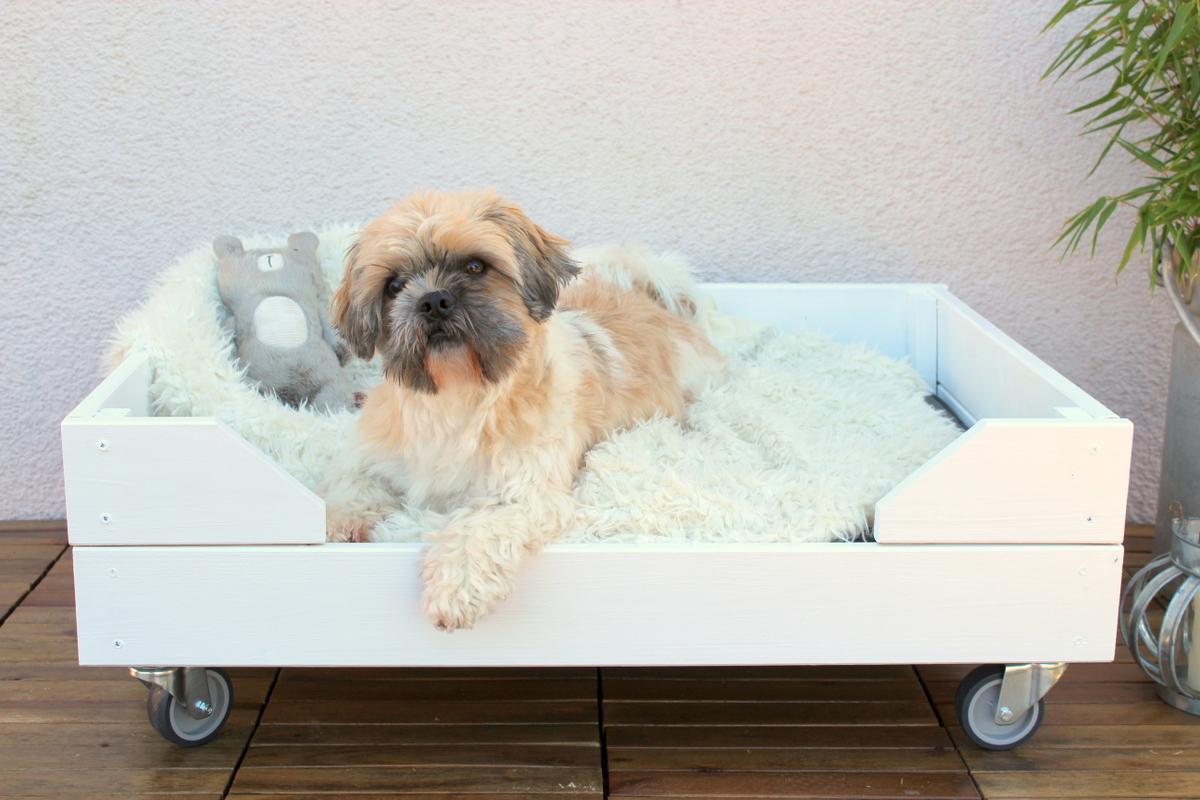 Selbstgebautes Hunde Outdoor-Bett aus Holz