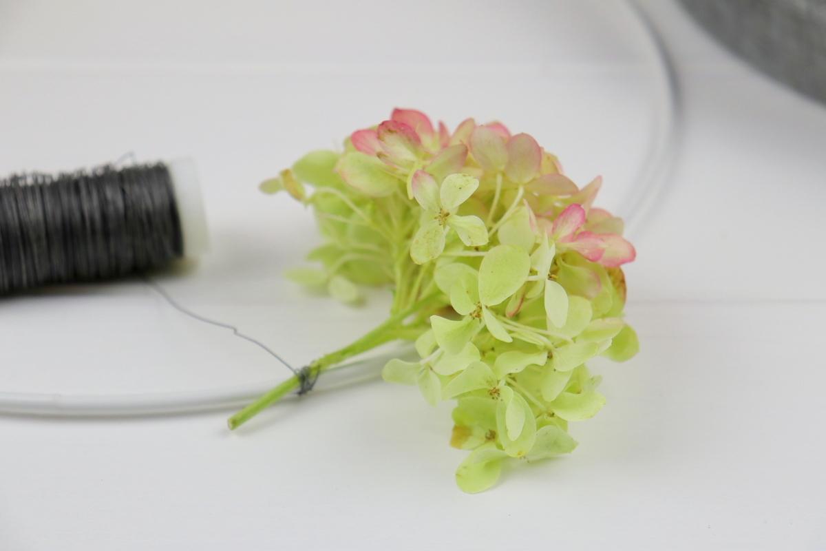 DIY Kranz aus Hortensien / Hortensienkranz einfach selber binden