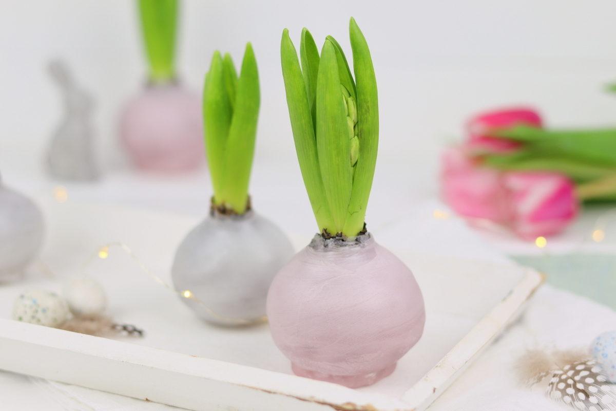 DIY selbstgemachte Hyazinthen in Wachs für den Frühling