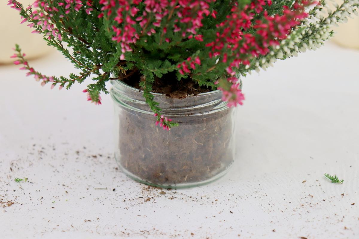 DIY Vase aus einem Kürbis / Kürbisvase einfach selber machen